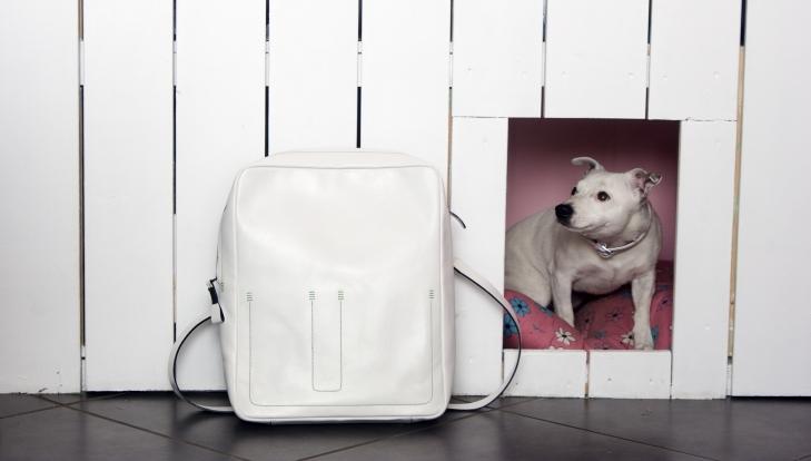 Tasche mit Hund